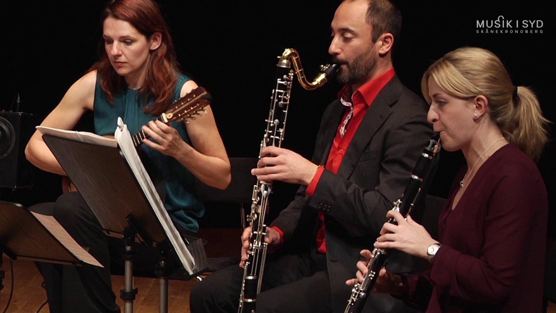 konsert20131027musikisyd-aschonberg-hd720p